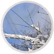 Snow Covered Branches Round Beach Towel