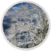 Snow Covered Tree And Winter Scene Round Beach Towel