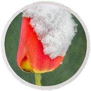 Snow Covered Tulip Round Beach Towel