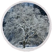 Snow Covered Winter Round Beach Towel