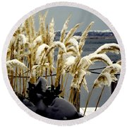 Snow Dust Round Beach Towel
