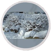 Snow Frosted Bush Round Beach Towel
