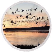 Snow Geese At Chincoteague Last Flight Of The Day Round Beach Towel