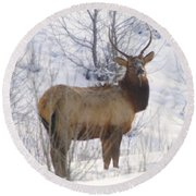 Snow In The Face  Round Beach Towel