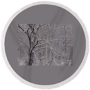 Snow In The Trees At Bulls Island Round Beach Towel