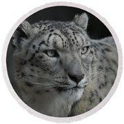 Snow Leopard 15 Round Beach Towel