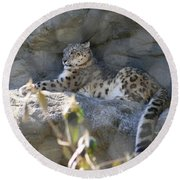 Snow Leopard    No.2 Round Beach Towel