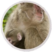 Snow Monkeys, Mother With Her Baby Round Beach Towel