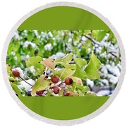 Snow On Green Leaves With Red Berries Round Beach Towel