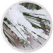 Snow On Pine Needles Round Beach Towel