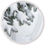 Snow On Winter Branches Round Beach Towel by Elena Elisseeva