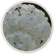 Snow Phlox Round Beach Towel