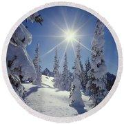 1m4882-snow Laden Tree Sunburst Round Beach Towel