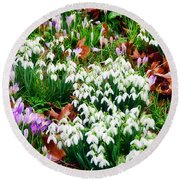 Snowdrops And Crocuses Round Beach Towel