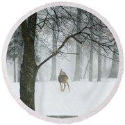 Snowy Deer Round Beach Towel