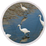 Snowy Egret Lunch Break Round Beach Towel