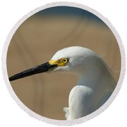 Snowy Egret Profile Round Beach Towel