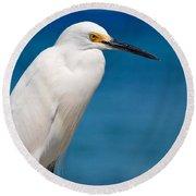 Snowy Egret Takin' Five Round Beach Towel