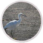 Snowy Egret Walk Round Beach Towel