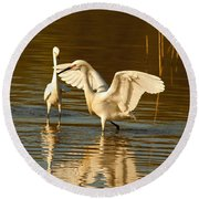 Snowy Egret Wingspan Round Beach Towel