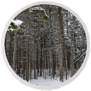 Snowy Forest In Acadia Round Beach Towel