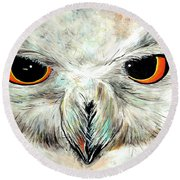 Snowy Owl - Female - Close Up Round Beach Towel by Daniel Janda