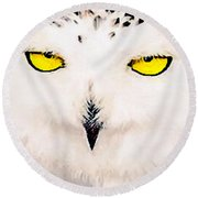 Artic Snowy Owl Painting Round Beach Towel