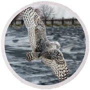 Snowy Owl Wingspan Round Beach Towel