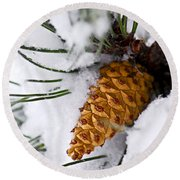 Snowy Pine Cone Round Beach Towel