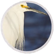 Snowy Portrait Round Beach Towel