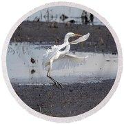 Snowy White Egret Round Beach Towel