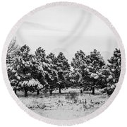 Snowy Winter Pine Trees In Black And White Round Beach Towel