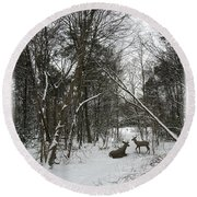 Snowy Wooded Path Round Beach Towel