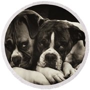Snuggle Bug Boxer Dogs Round Beach Towel by Stephanie McDowell