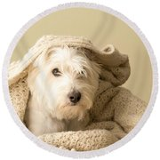 Snuggle Dog Round Beach Towel