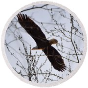 Soaring Above Round Beach Towel