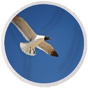 Soaring Above The Sea Round Beach Towel