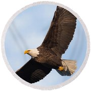 Soaring American Bald Eagle Round Beach Towel