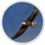 Soaring Bald Eagle Round Beach Towel