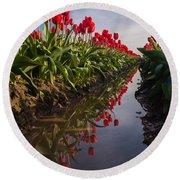 Soaring Crimson Tulips Round Beach Towel