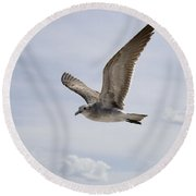 Soaring Gull Round Beach Towel