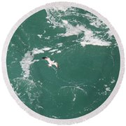 Soaring Over The Falls Waters Too Round Beach Towel