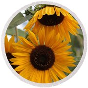 Soft Colors Sunflowers Round Beach Towel