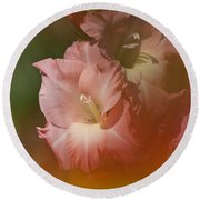 Soft Gladiolus Round Beach Towel