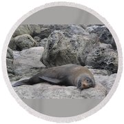 Soft Life Seal Round Beach Towel