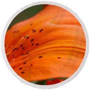 Soft Lily Round Beach Towel