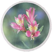 Soft Pink Alstroemeria Flower Round Beach Towel