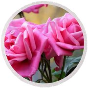 Soft Pink Roses Round Beach Towel