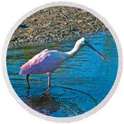 Soft Pink Spoonbill Round Beach Towel