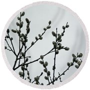 Soft Pussy Willows - Hard Gray Sky Round Beach Towel